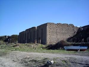 Carob Warehouse | Tatlisu