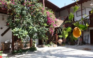 Lefke Gardens Hotel | Courtyard